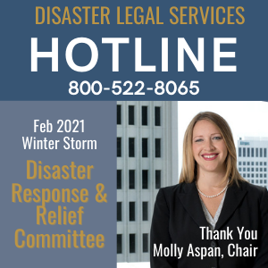 DISASTER HOTLINE 300